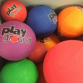 pe play ground ball dealer